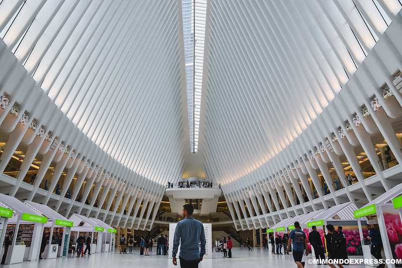 The Oculus, Nueva York