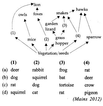 NEET AIPMT Biology Chapter Wise Solutions - Ecosystem-img 4
