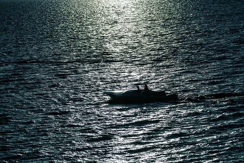 Moonlit Boating
