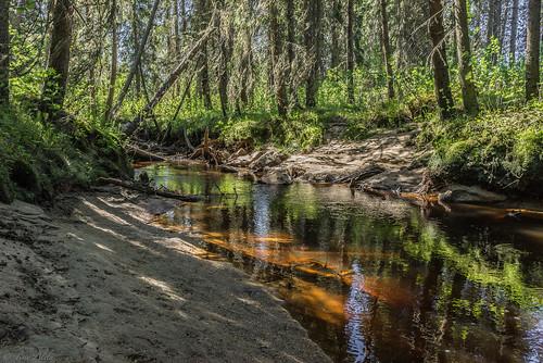 reflection pattijoki water sunny summer sand forest raahe ylipää lasikangas finland landscape
