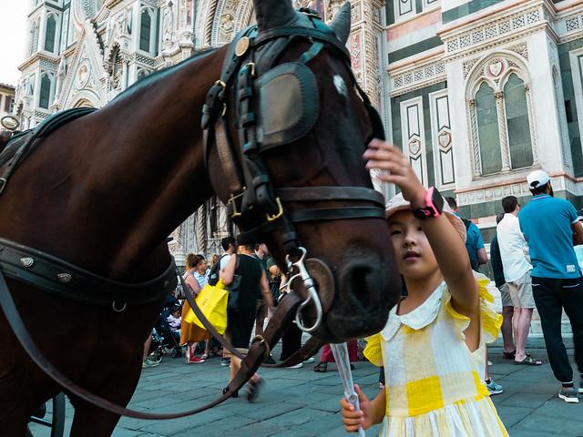 firenze cavallo, Nikon D3100, AF DX Fisheye-Nikkor 10.5mm f/2.8G ED