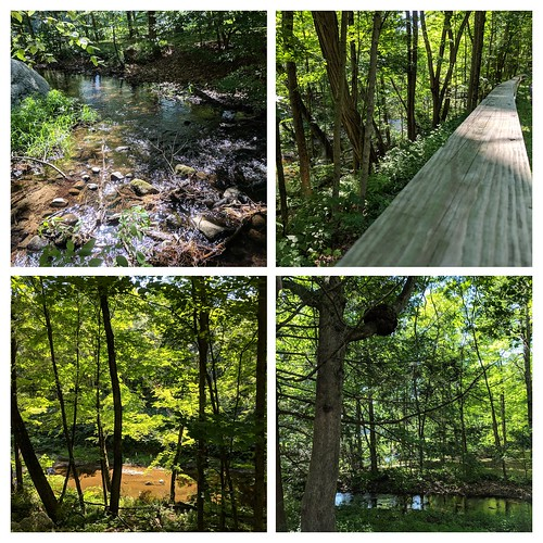 Mill River Greenway Walk