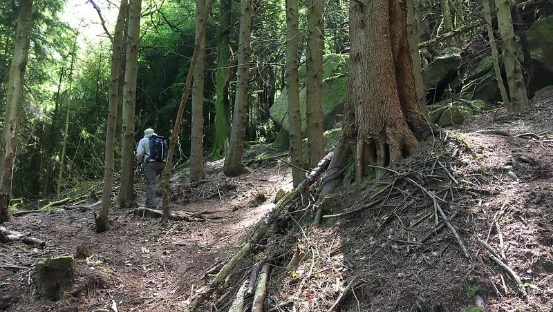 Paul Buck ascending Lower Rough Tor