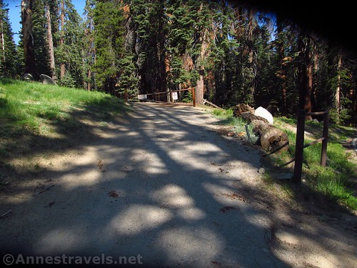 The view up the fire road from the Glacier Point Road, en route to Sentinel Dome, Yosemite National Park, California