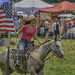 Johnson Winery Horse and Hound festival