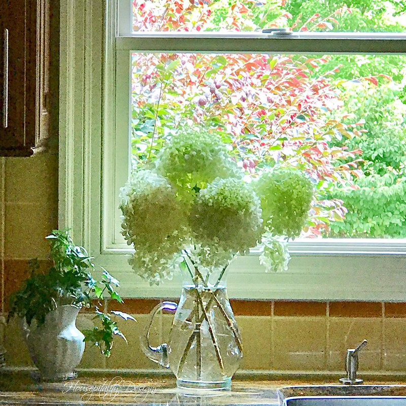 Limelight Hydrangeas-Housepitality Designs