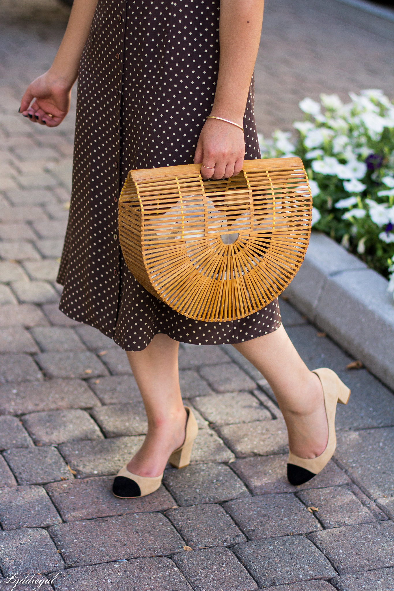 Brown polka dot midi dress, toe cap heels, bamboo bag-9.jpg