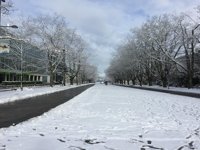 UBC snow