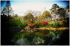 Birmingham Botanical Gardens-3