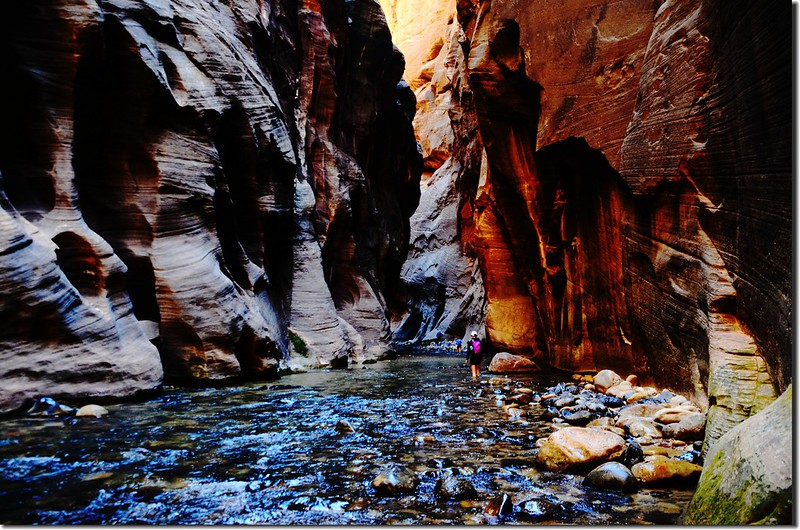 The Narrows, Zion National Park (47)