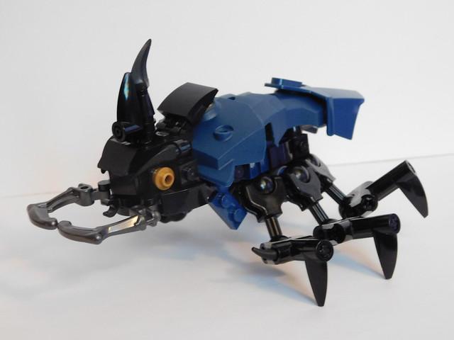 Scarab Beetle, Nikon COOLPIX L840