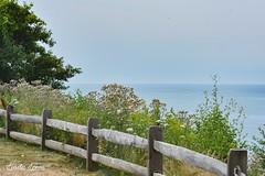 Lake Erie Bluffs 7/14/18
