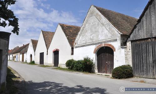 Burgenland Neusiedlersee Oggau_DSC1085A