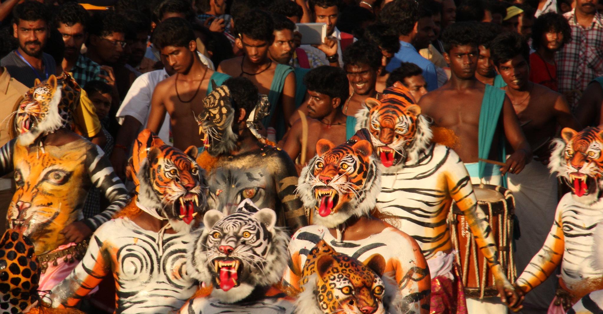 Pulikali tigers dancing in Thrissur on Onam