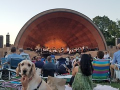7-18-2018: The Landmarks Orchestra was so doggone good! Boston, MA