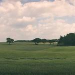 20180620-123353  Pano Landschaft Schleswig-Holstein