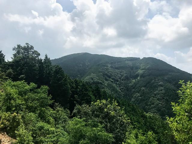 大茂山 77番鉄塔から山頂を望む