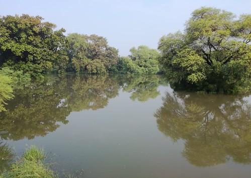 डिस्ट्रिक्ट पार्क तालाब सेक्टर 23 द्वारका दिल्ली