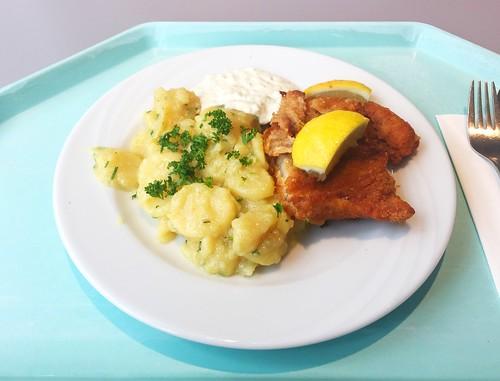 Baked coalfish with remoulade & home made potato salad / Gebackener Seelachs mit Remoulade & hausgemachten Kartoffelsalat