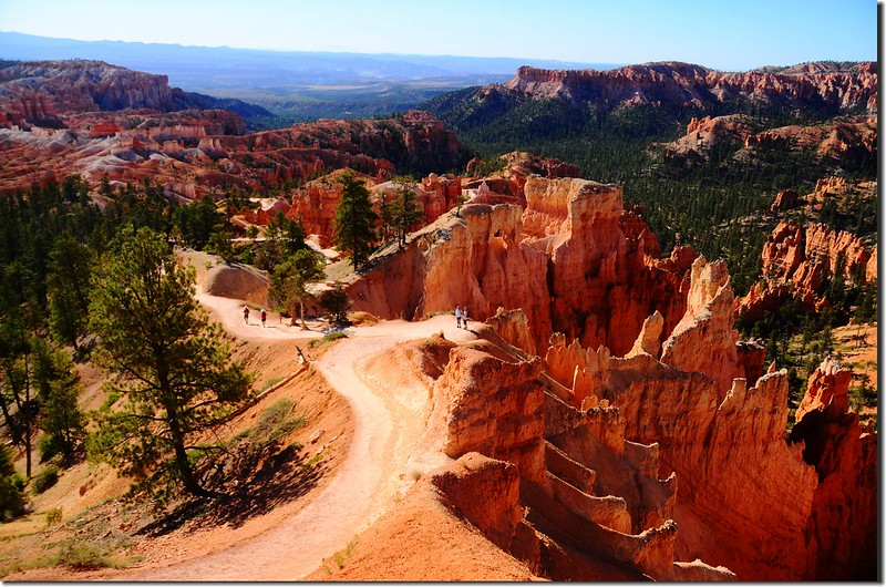 Rim Trail, Bryce Canyon (6)