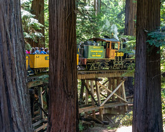 Dixiana pulling us over the trestle