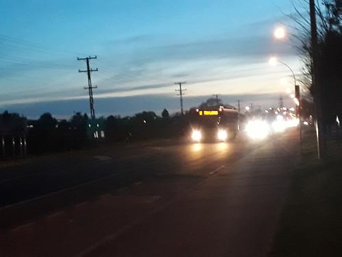 Go bus 786