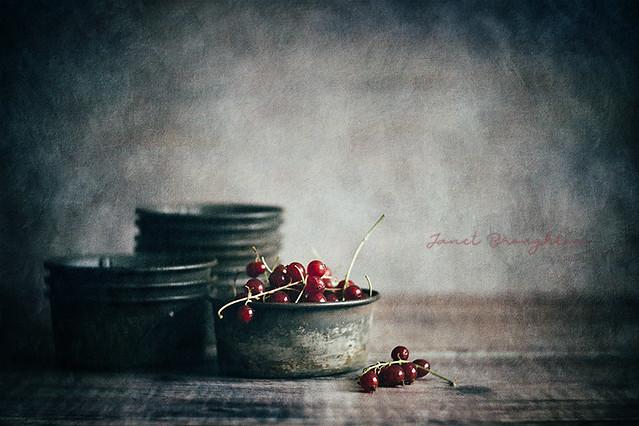 Redcurrants #1