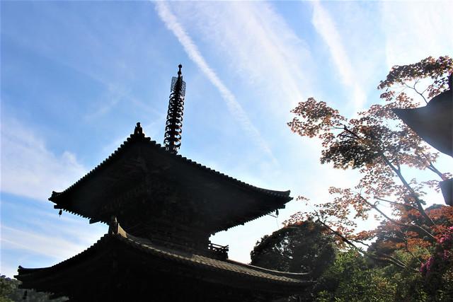 ichijoji-insta025