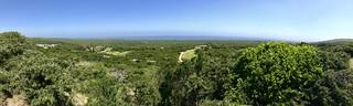 Green Coast View