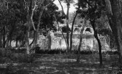 Tierras Mayas