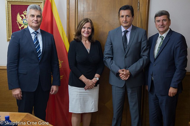 Official visit of the President of the Congress to Montenegro