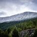 Northern Cascades National Park-002