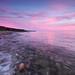 Parton dusk swell