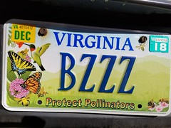 Bzzz (Protect Pollenators)