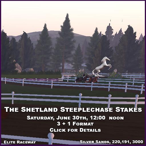 The new RealHorse Shetland Pony, coming very soon! - TeleportHub.com Live!