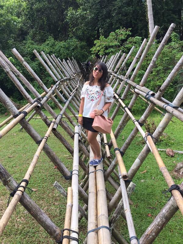 Rainforest World Music Festival 14