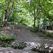 Into the Woods, Oak Hill Park