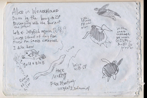 Nina Khashchina Sketchbook #113: Trip to Bonaire - Underwater Sketching / Scuba Diving with a Sketchbook