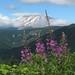 a friendlier Mt. St. Helen's by al-ien