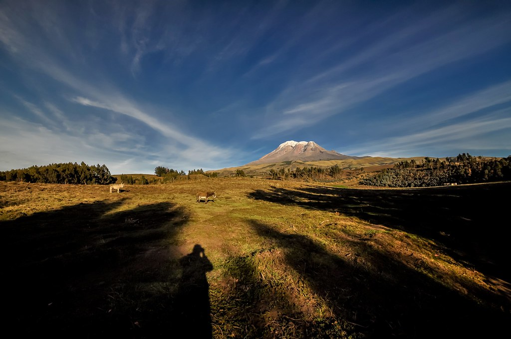 Self-shadow portrait @ Chimborazo with donkeys
