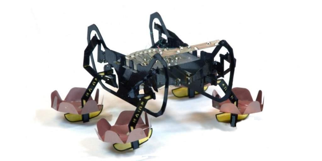 robot-tous-les environnements