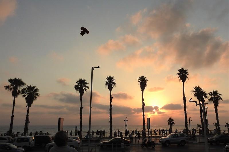 Чебурашка умеет летать