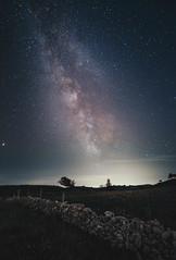 Milky Way in Switzerland!
