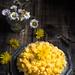 torta mimosa senza glutine e senza lattosio-9409