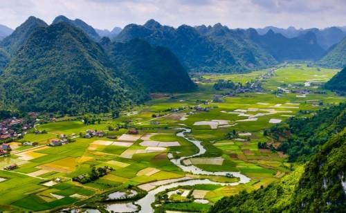 phongcanh_vietnam01