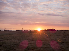 Sunset Hedon Aerodrome Fields lens flare