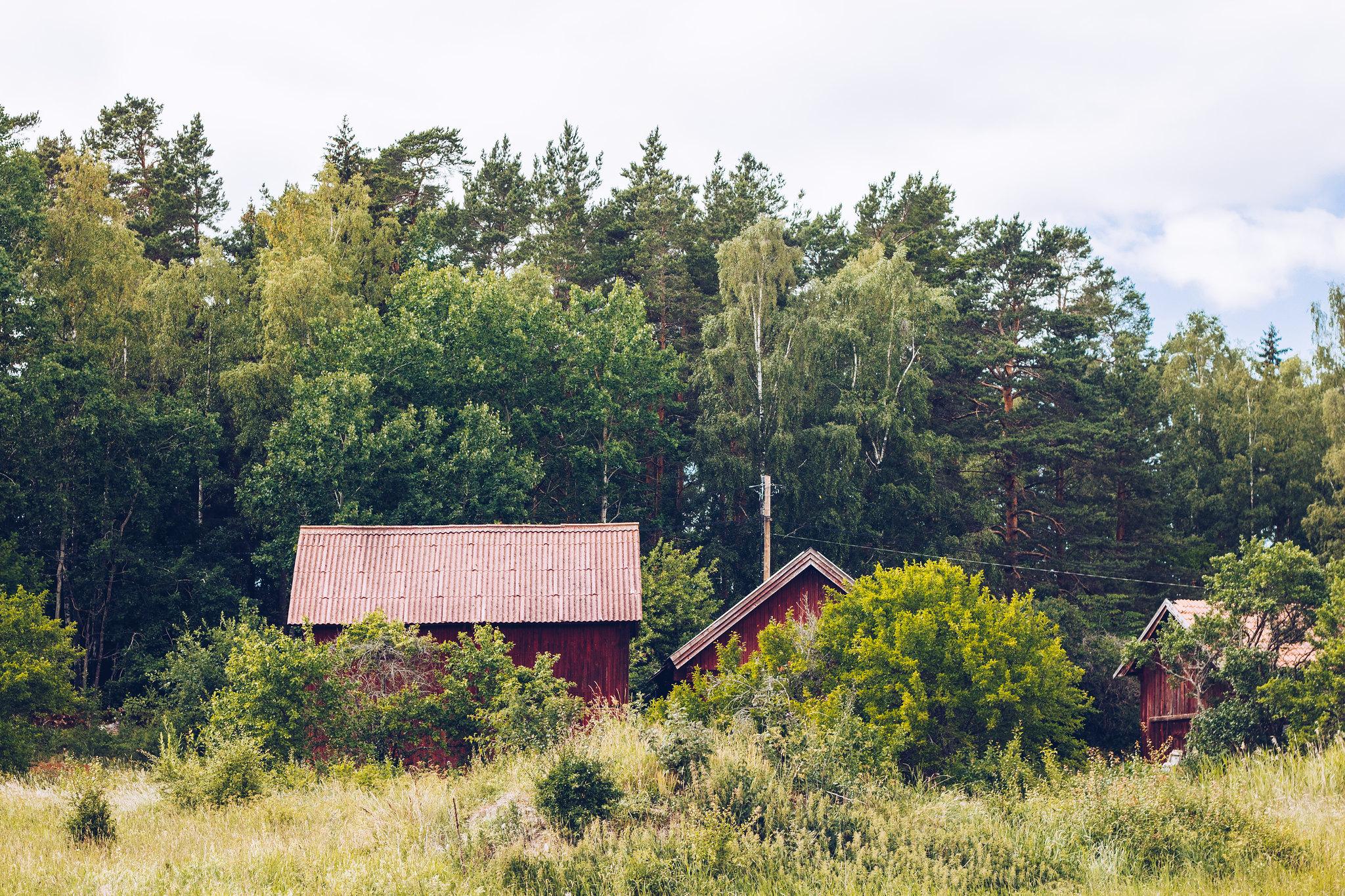 Midsommardagen Björsund - reaktionista.se