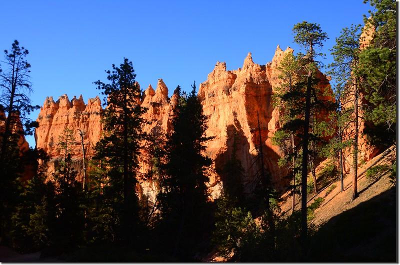 Queens Navajo Combination Loop,Bryce Canyon (7)