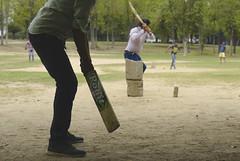 Cricket day #travel #india #punjab #chandigarh #street
