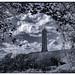 Tyndale Monument '18 B&W